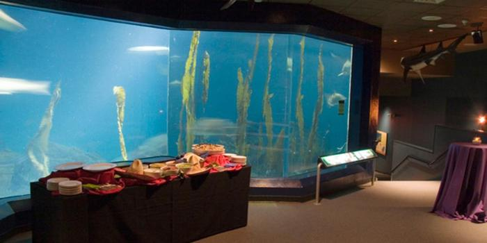 Maritime Aquarium at Norwalk wedding venue picture 3 of 13 - Provided by: Maritime Aquarium at Norwalk