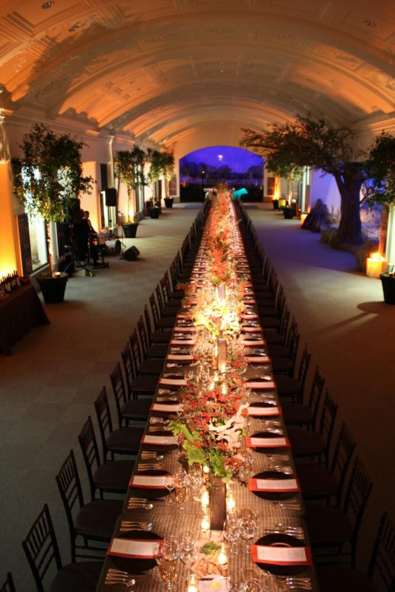 California academy of sciences weddings for Wedding venues sf bay area