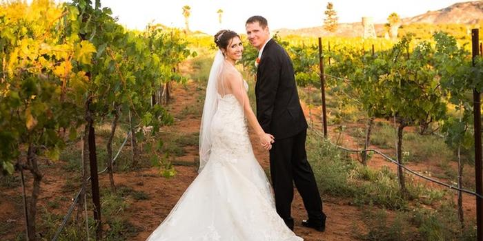 Cordiano Winery wedding venue picture 5 of 6 - Photo by: Larissa Bahr Photography