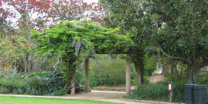 Alice Keck Park Memorial Garden wedding Santa Barbara