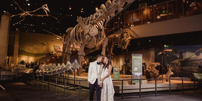 Texas Memorial Museum In Austin Citysearch Jpg 379x253 Discover Dinosaur Tx