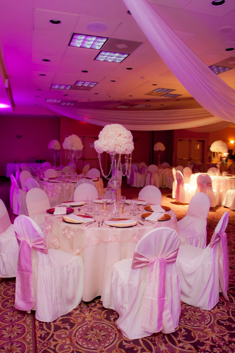 Holiday Inn Orlando International Airport wedding venue picture 5 of 8 - Photo by: FrankFoto