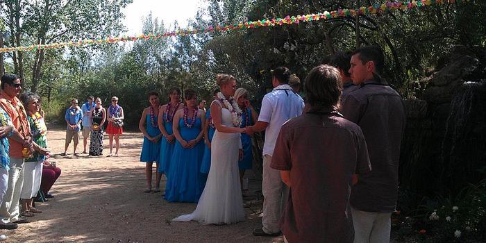 Island Promotions LLC Weddings