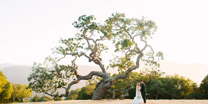 Holman Ranch Vineyards wedding venue picture 11 of 16 - Photo by: Meg Perotti Wedding Photography