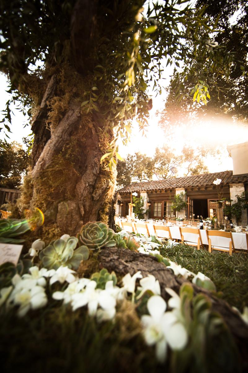 Holman Ranch Vineyards wedding venue picture 3 of 16 - Photo by: Rebecca Stark Wedding Photography