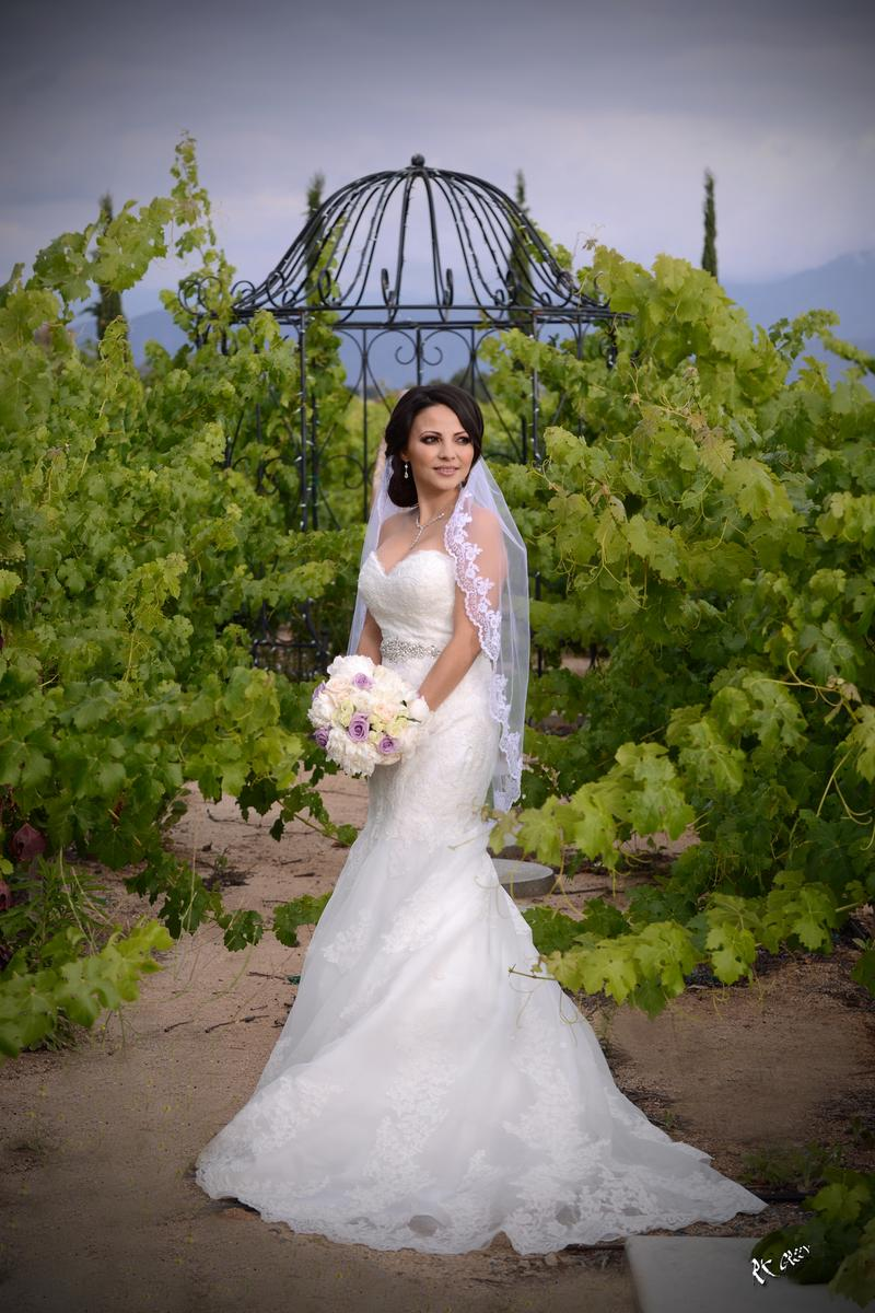 Mount Palomar Winery wedding venue picture 10 of 16 - Provided by: Mount Palomar Winery