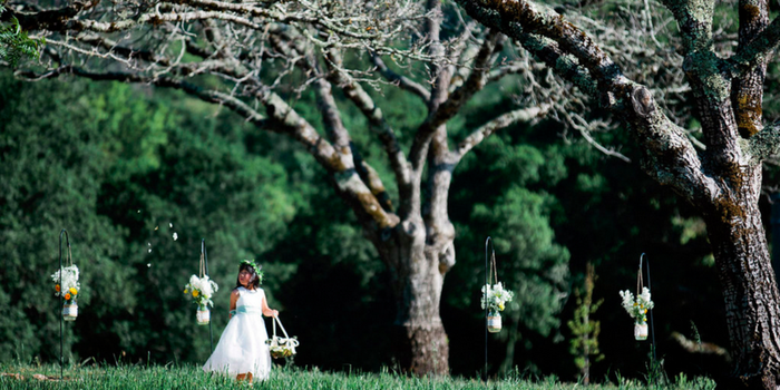 Triple S Ranch Napa wedding venue picture 3 of 16 - Photo by: Alison Yin Photography