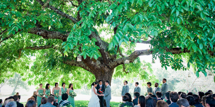 Triple S Ranch Napa wedding venue picture 2 of 16 - Photo by: Alison Yin Photography