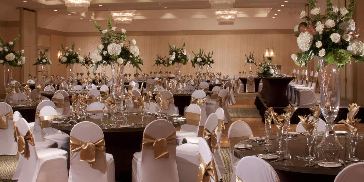 Hilton Tampa Westshore Weddings   Get Prices for Wedding ...