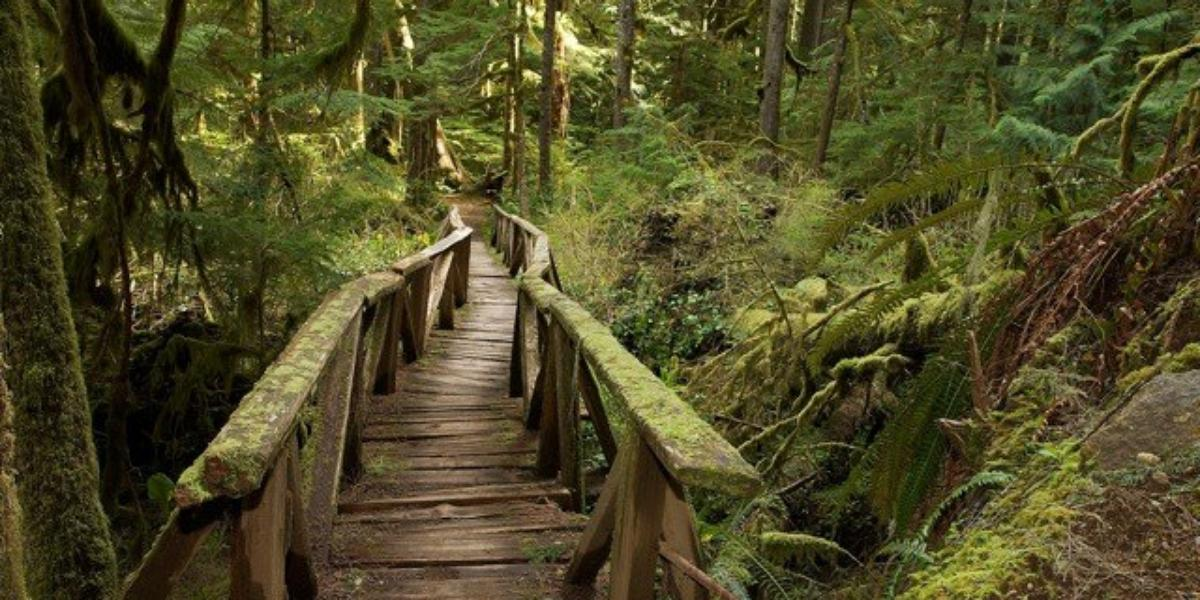 Tacoma Nature Center Weddings Get Prices For Wedding Venues In Wa
