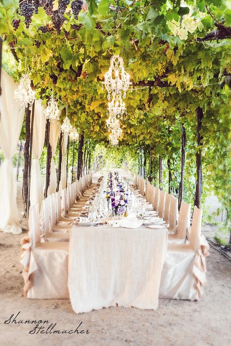 Trentadue Winery, a Milestone property wedding venue picture 2 of 16 - Photo by: Shannon Stellmacher Photography