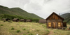 Ashcroft Ghost Town, Aspen Historical Society wedding venue picture 9 of 16