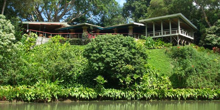 Haiku Gardens Oahu Fasci Garden