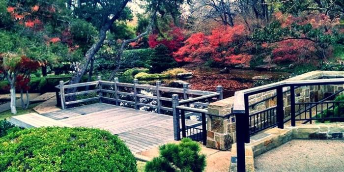 Fort Worth Botanic Garden Weddings | Get Prices for ...