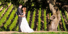 Robert Young Estate Winery, a Milestone property wedding venue picture 29 of 45