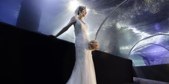 Greater Cleveland Aquarium Weddings in Cleveland OH