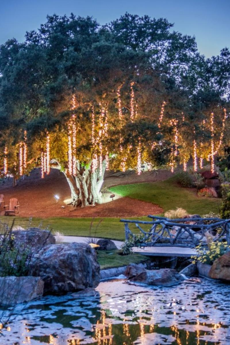 Garden Setting at Saddlerock Ranch wedding venue picture 11 of 16 - Photo by: Mora Photography