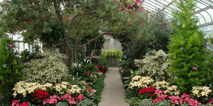 Hidden Lake Gardens Wedding Venue Picture 6 Of 16 Provided By