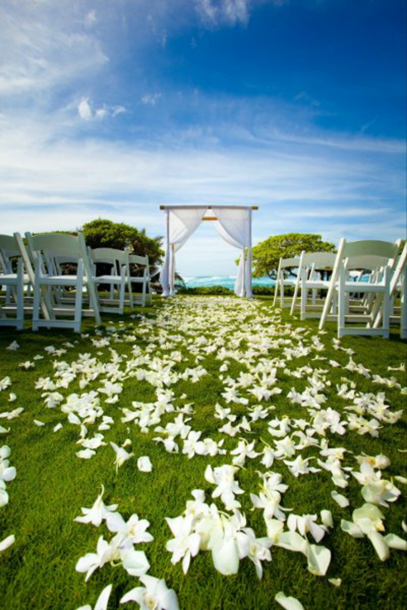 turtle bay resort wedding venue picture 2 of 16 photo by bianca photography