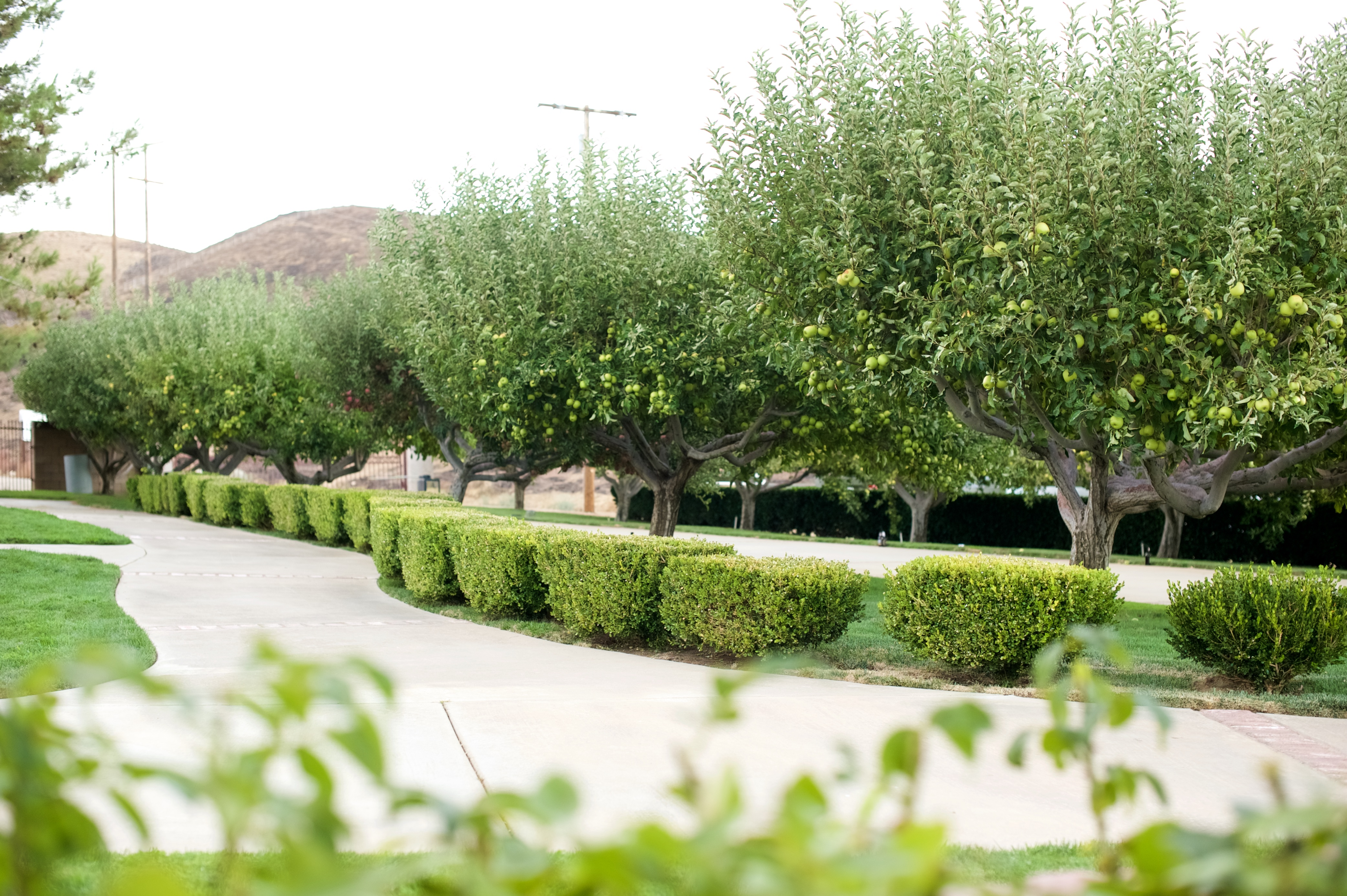 Hacienda Reyes Venue Palmdale Get Your Price Estimate Today