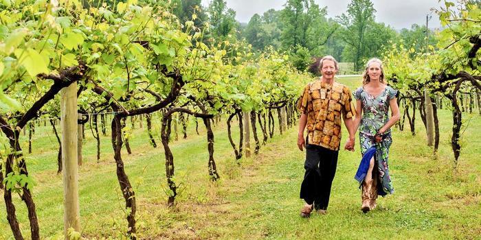 tiger mountain vineyards weddings get prices for wedding venues in ga