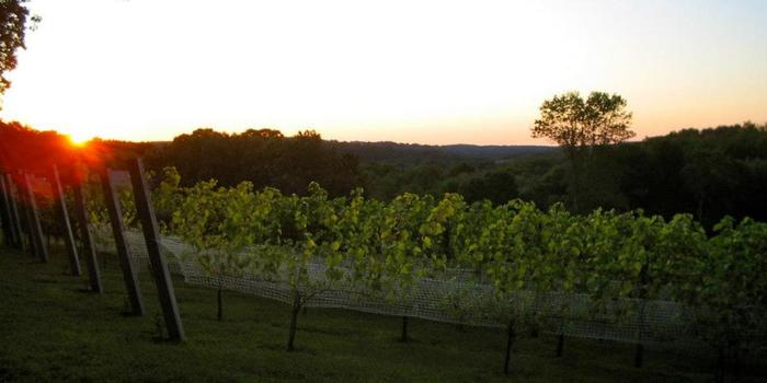 Willow Spring Vineyards Weddings Get Prices For Wedding