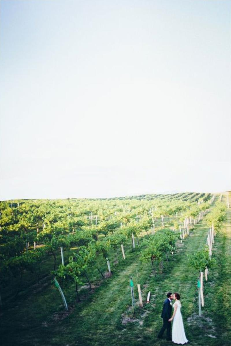 Summerset Winery Weddings Get Prices For Wedding Venues