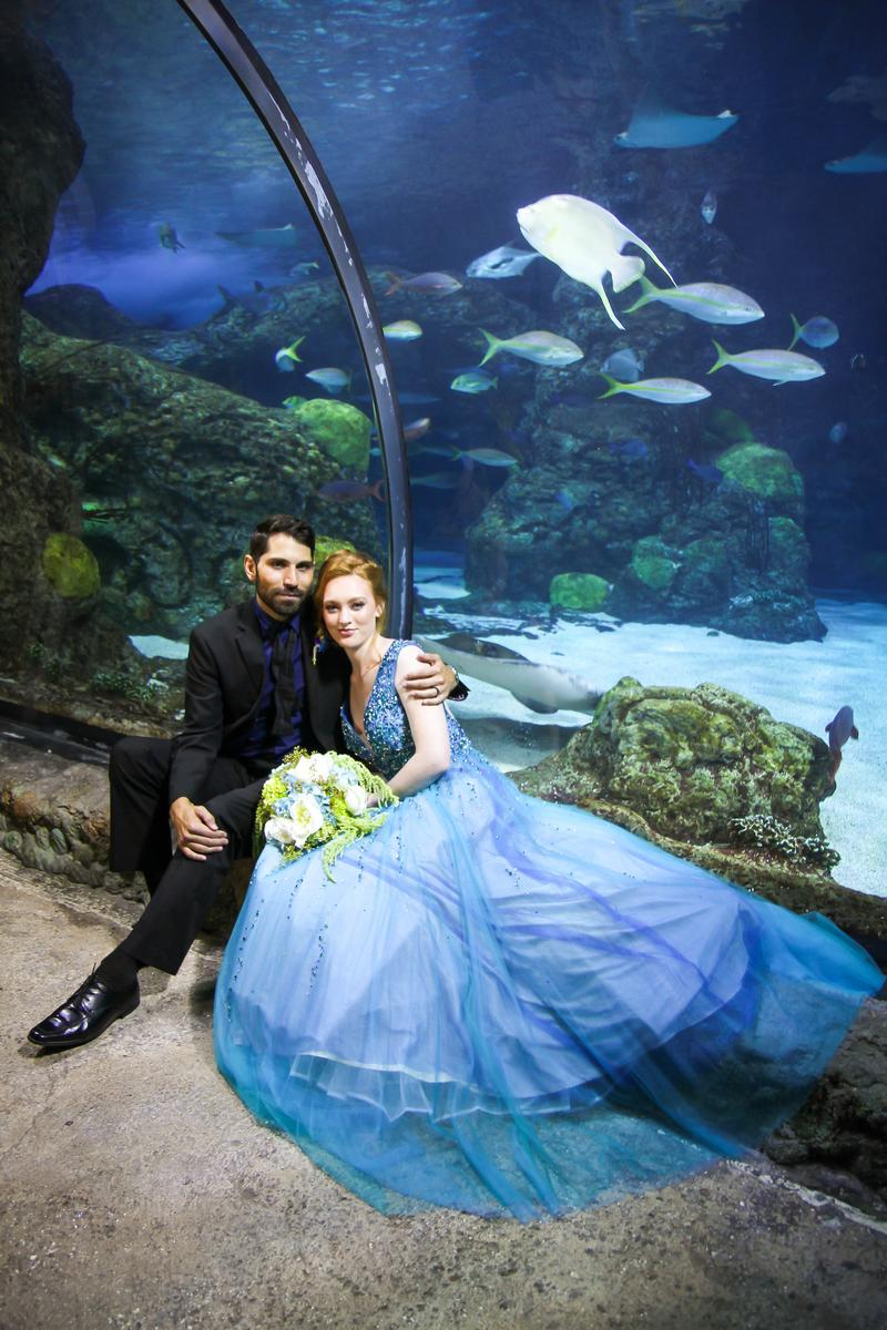 Downtown Aquarium Denver Weddings Get Prices For Wedding