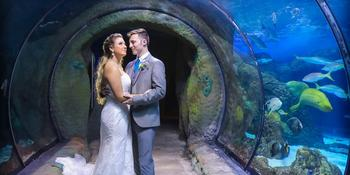 Downtown Aquarium Denver weddings in Denver CO