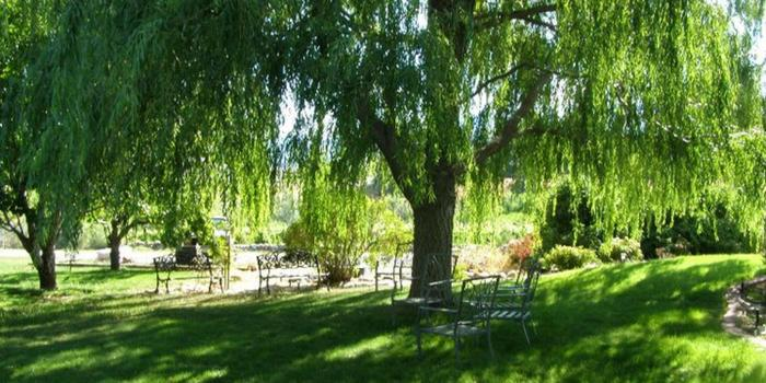 The Wedding House at Palisade wedding venue picture 11 of 15 - Provided by: The Wedding House at Palisade