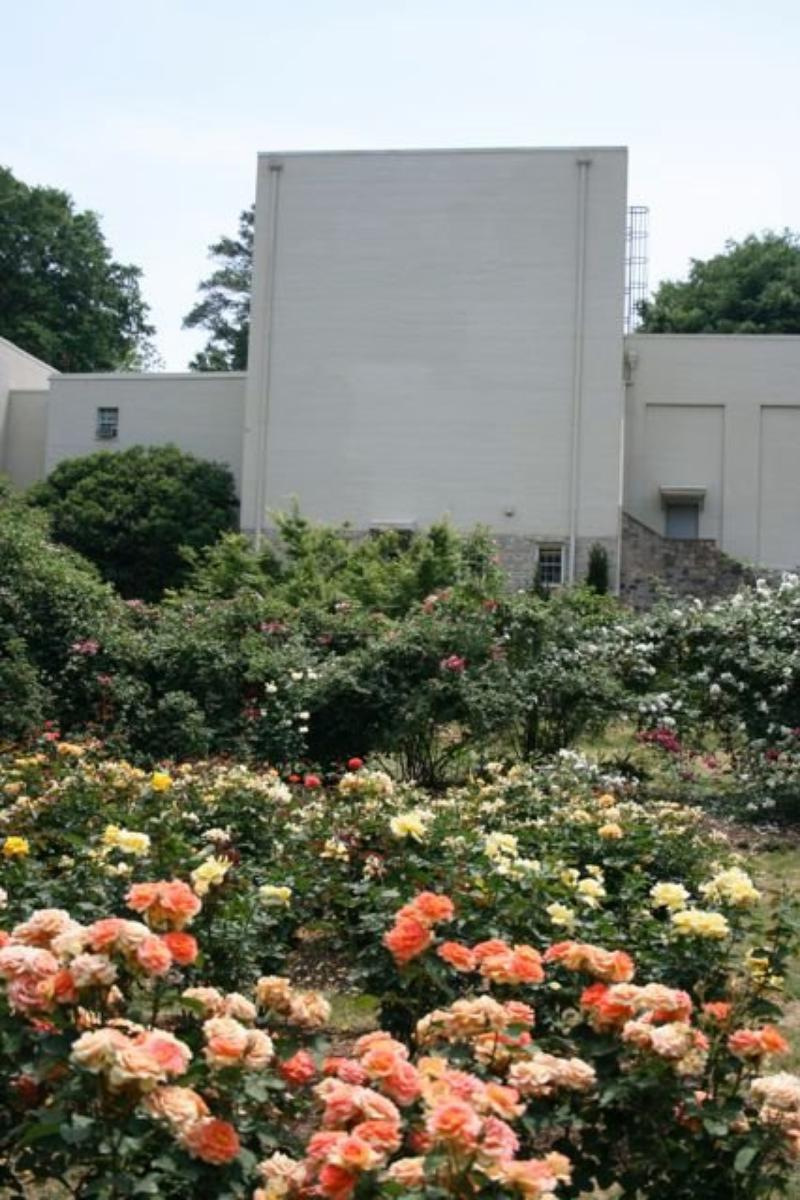 Raleigh Little Theatre Rose Garden Weddings