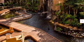 The Westin Maui Resort & Spa Ka'anapali Weddings in Maui HI