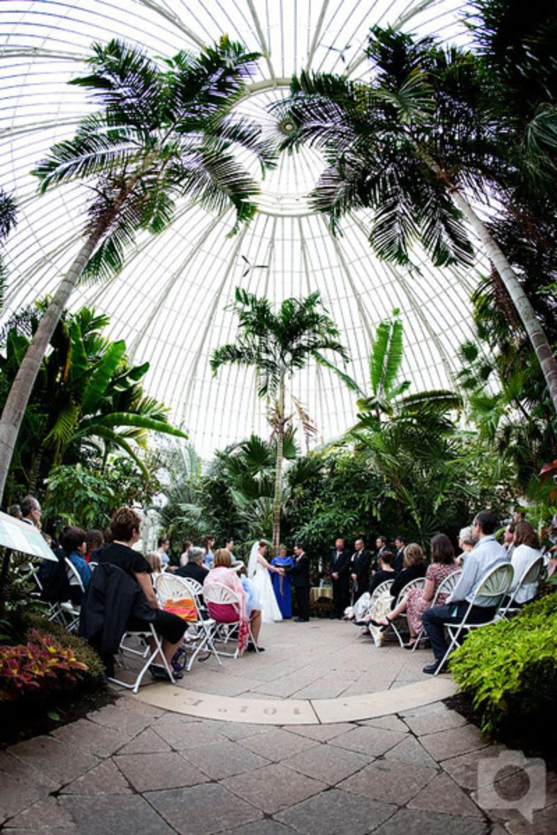 Buffalo and Erie County Botanical Gardens Weddings