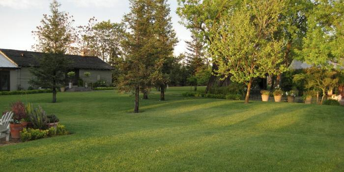 Pageo Lavender Farm wedding venue picture 14 of 16 - Provided by: Pageo Lavender Farms