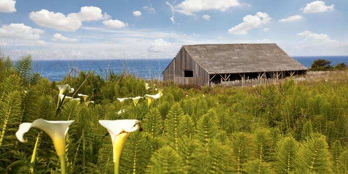 sea ranch lodge weddings get prices for wedding venues in ca