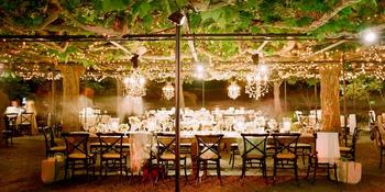 Beaulieu Garden weddings in Rutherford CA