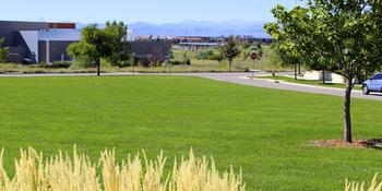 Summer Park weddings in Denver CO