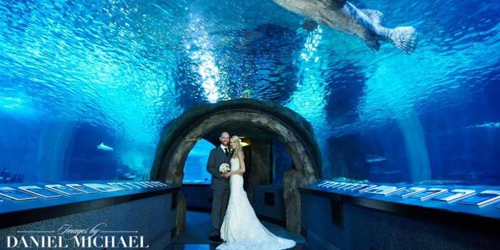 Newport Aquarium wedding venue picture 3 of 11 - Photo by: Daniel Michael Inc