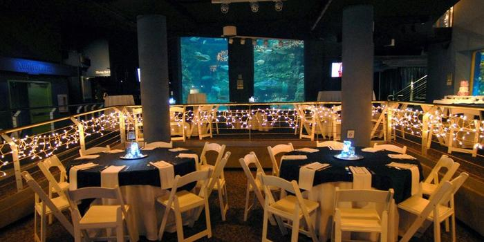 north carolina aquarium of fort fisher weddings get prices for