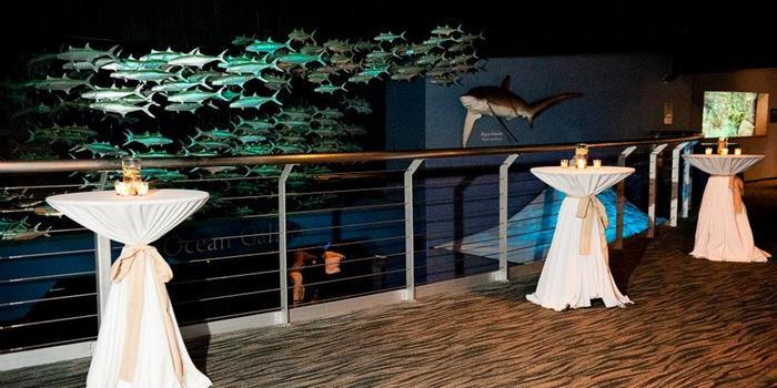 North Carolina Aquarium Of Fort Fisher Weddings