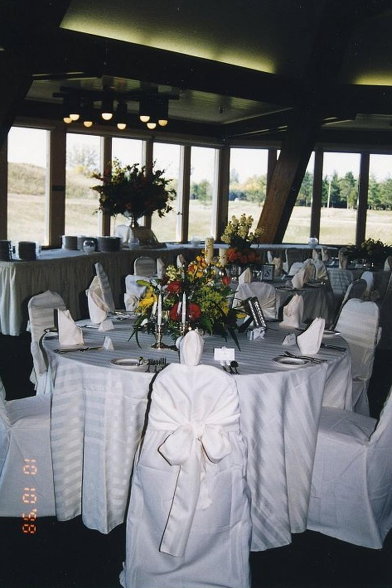 apple mountain weddings | get prices for wedding venues in mi