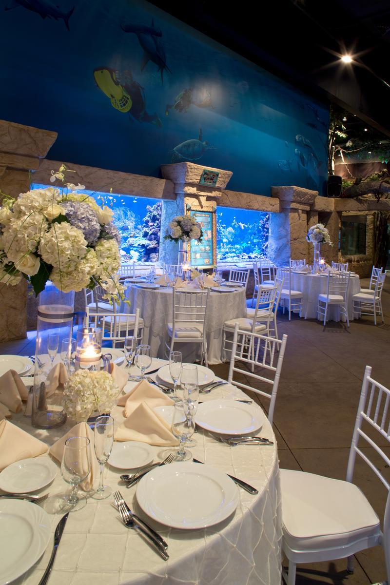 Atlantis Wedding Venue Long Island