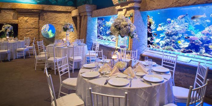 atlantis banquets events long island aquarium weddings
