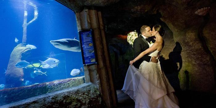 atlantis banquets events long island aquarium wedding venue picture 8 of 16 provided