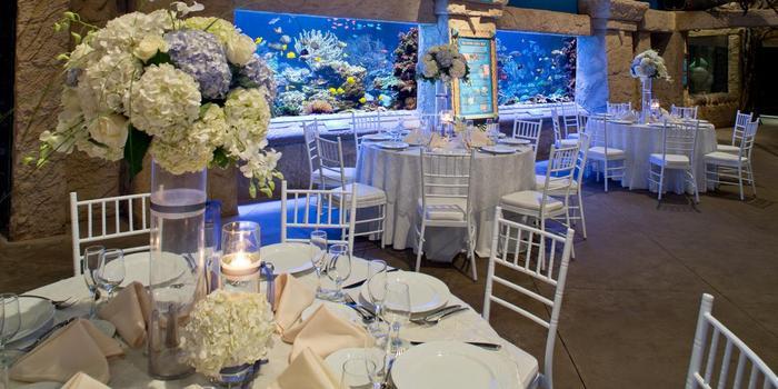 atlantis banquets events long island aquarium wedding venue picture 10 of 16 provided