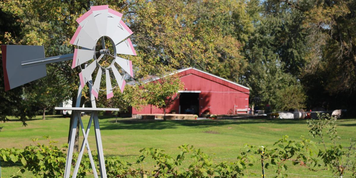 Farm Girl Weddings Weddings | Get Prices for Wedding ...