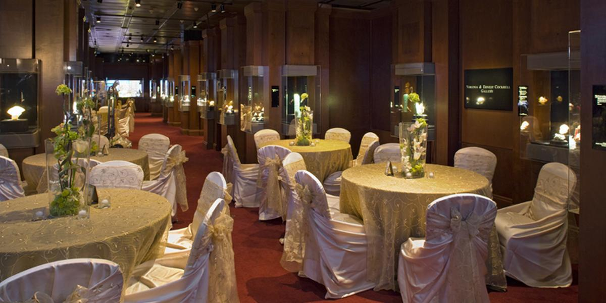 How To Plan Inexpensive Wedding Venues Houston: Houston Museum Of Natural Science Weddings