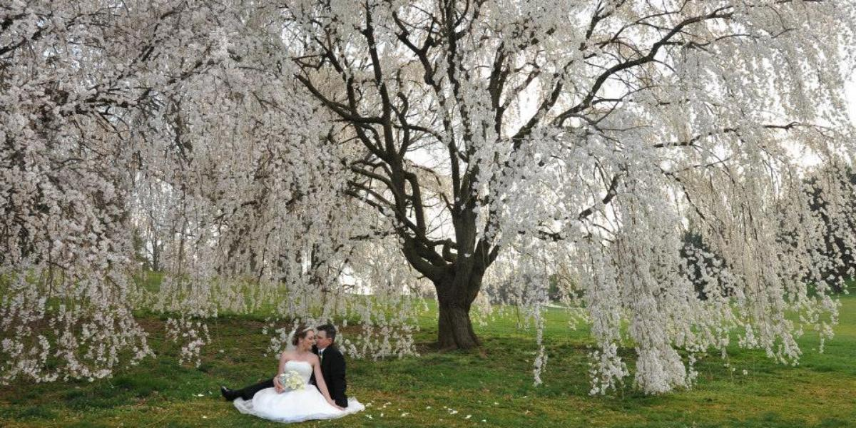 Hidden Creek Country Club Weddings Get Prices For