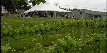 Virginia Mountain Vineyards weddings in Fincastle VA